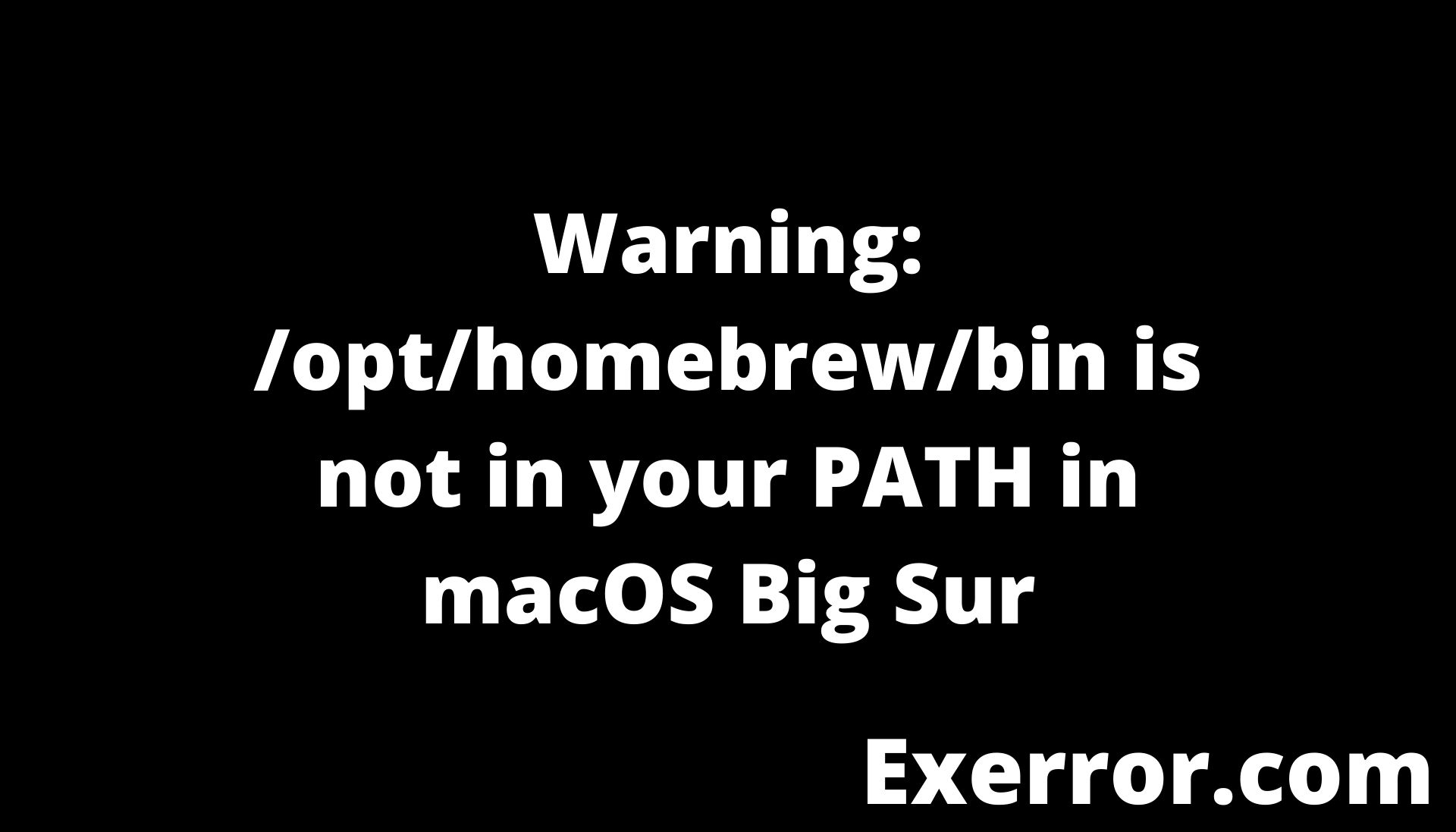 Warning opthomebrewbin is not in your PATH in macOS Big Sur, Getting a warning when installing homebrew on macOS Big Sur (M1 chip)